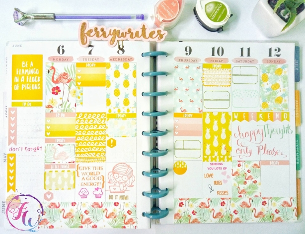 The_Happy_Planner_week_23_ferrywrites